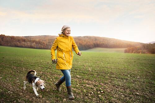 walk with a dog