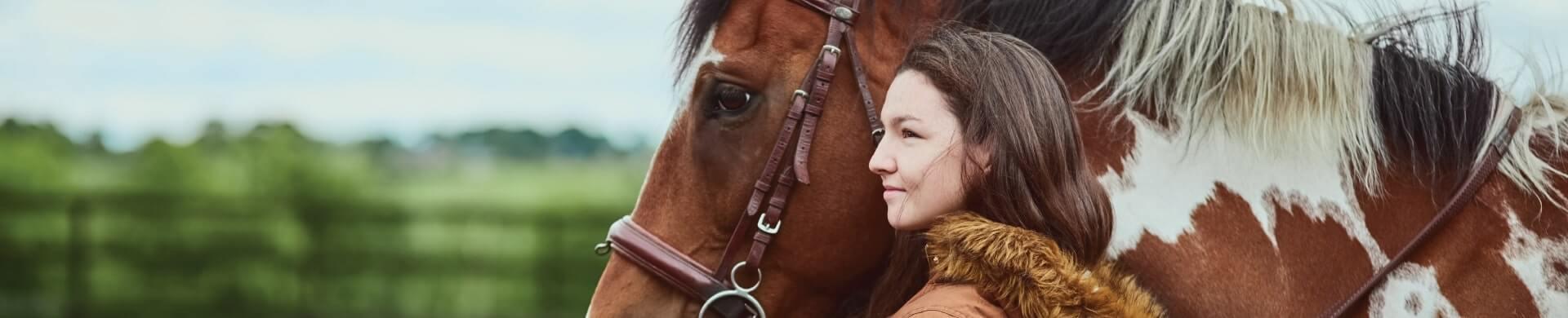 Horse success stories banner image